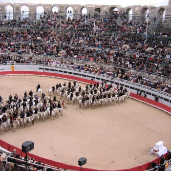 Städte und Kultur - Arles Amphitheater - Reiseleiter Provence