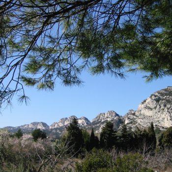 Alpilles - Reiseleiter Provence